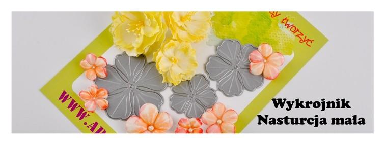 http://apscraft.pl/pl/kwiatki/251-wykrojnik-kwiat4d.html